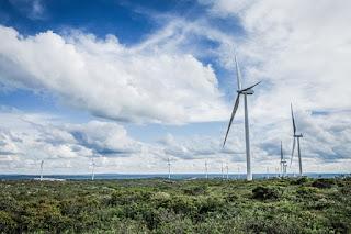 Bahia gerou energia eólica e solar