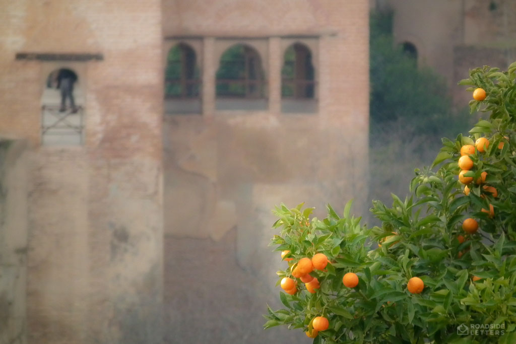 Oranges growing in Alhambra - Granada, Spain