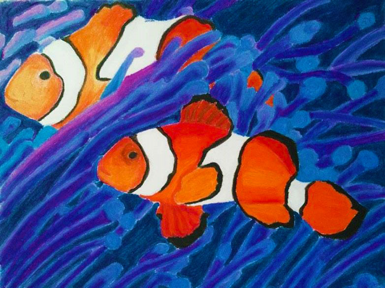 Clownfish Oil Pastel Painting