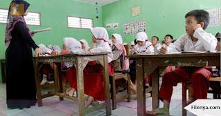 Di Daerah ini Dibutuhkan 1.503 Guru SD
