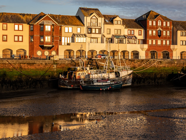 Photo of Maryport Harbour bathed in golden evening light