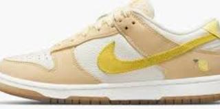 Fakta Dibalik Munculnya Sepatu Nike