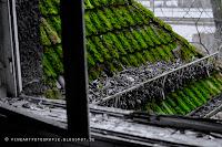 http://fineartfotografie.blogspot.de/2014/01/lost-places-fotografie-die-asthetik-des.html