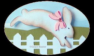 bunny hop, closeup. By Grace Baxter