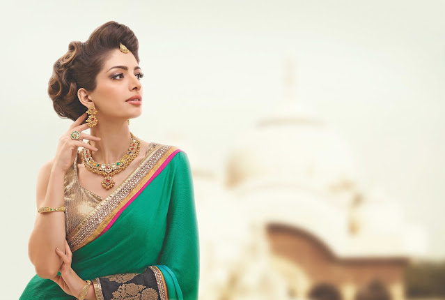 Beautiful South Asian woman wearing jewelry and sari.