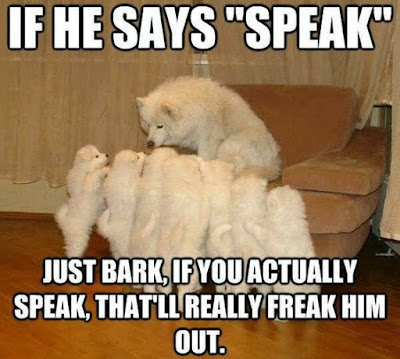 Dog Humor : Bark if you can hear me