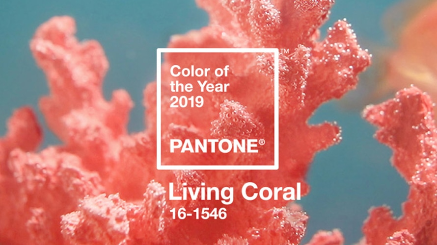 Living Coral | COMO USAR A COR DO ANO DE 2019?