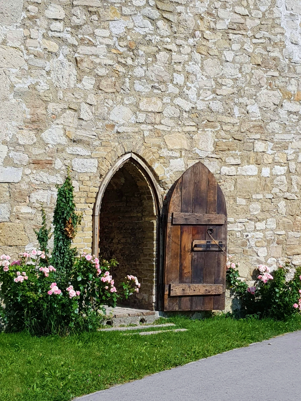 Tür, historische Tür, Rosen, historische Stadtmauer,