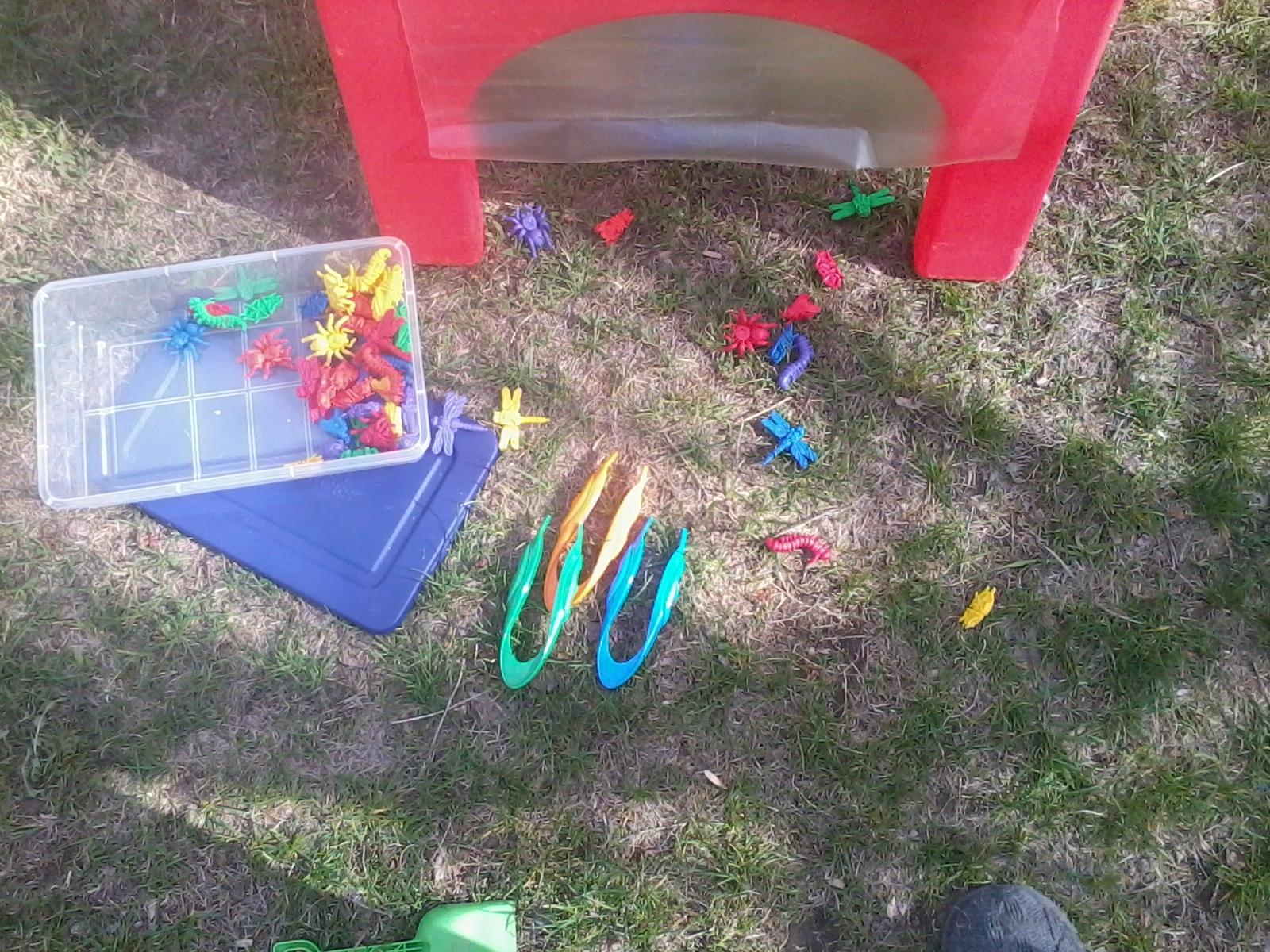Preschool And More Creepy Crawlies