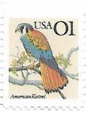 Selo Falco sparverius