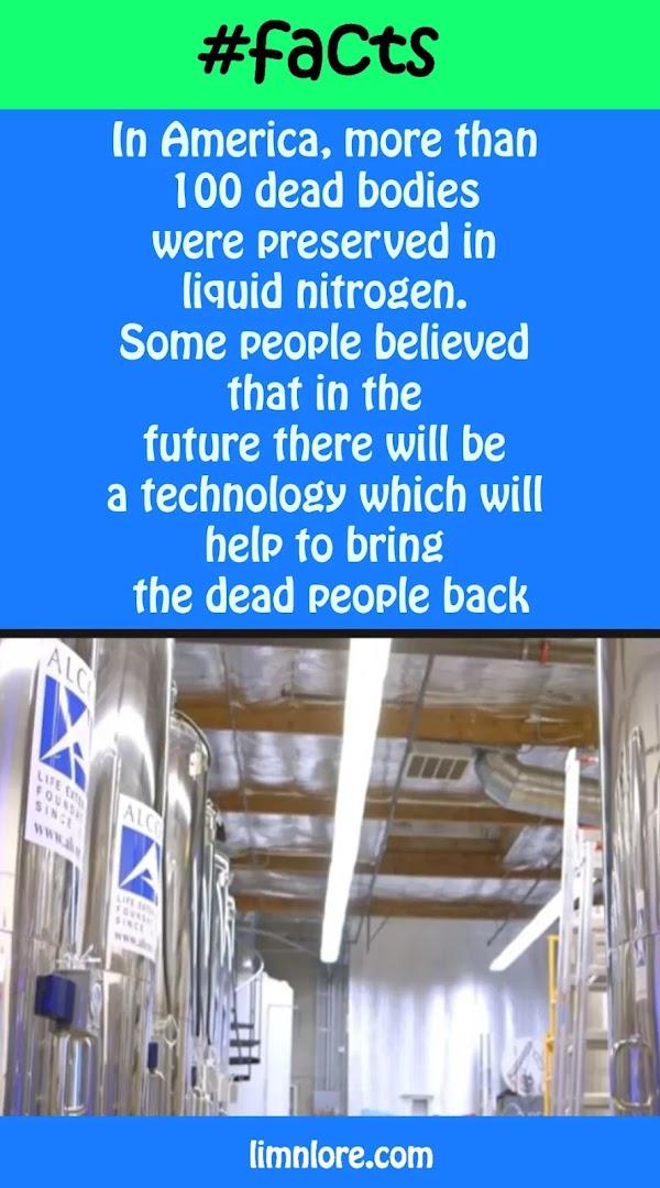 Preserving dead body for future