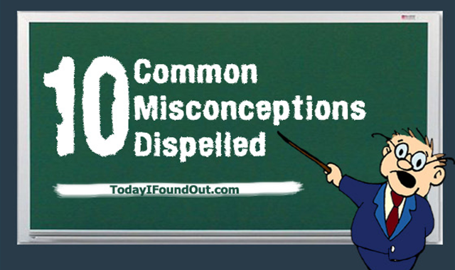 10 Common Misconceptions Dispelled #infographic