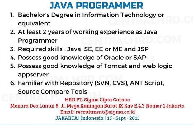Java Programer
