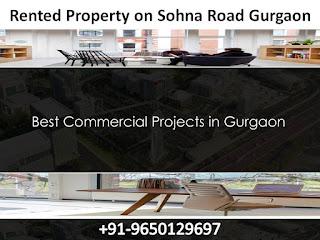 Rented Property on Sohna Road Gurgaon || 9650129697