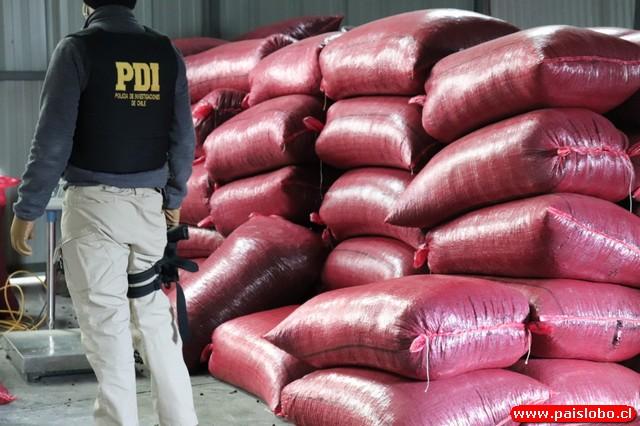 🚨PDI desarticula organización criminal que operaba en Puerto Montt y Arica