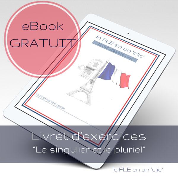 eBook gratuit, cours de français, Livret d'exercices, Le singulier et le pluriel
