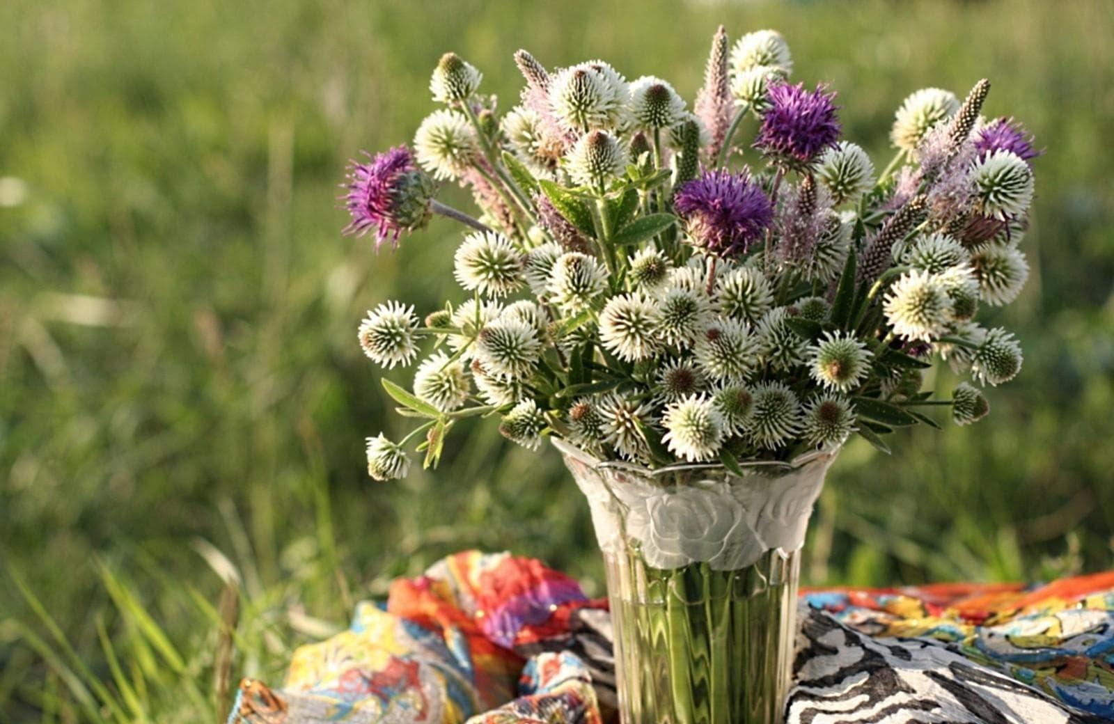 Panadol boleh buat bunga hidup tahan lama?