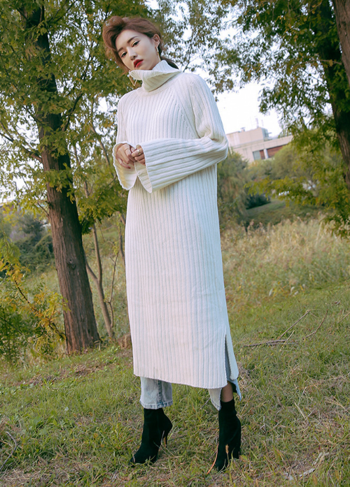 Turtleneck Ribbed Raglan Sleeve Dress
