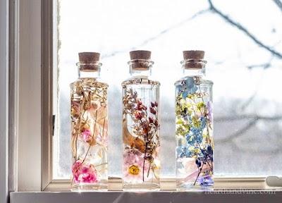 Herbario japonés en botella de cristal y cómo hacerlo