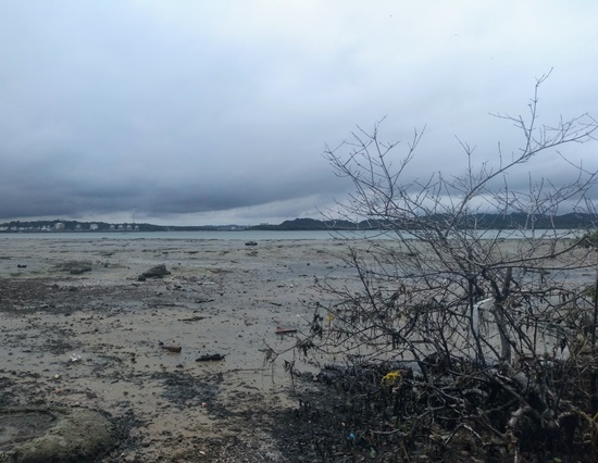 Ilha de maré - Itamoabo, Gamboa, Praia das Neves e Botelho