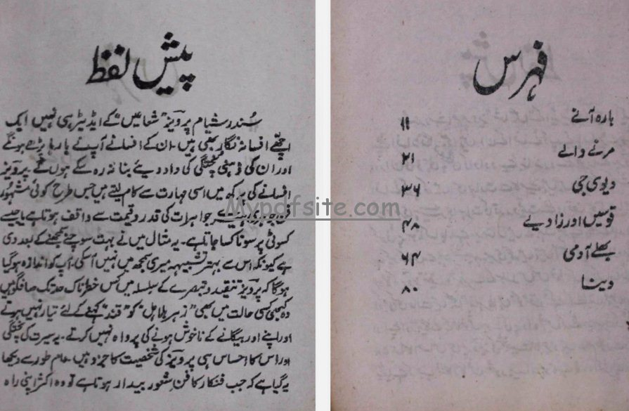 barah-aane by parvez book