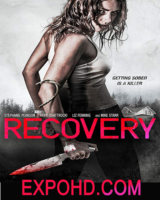 Recovery 2019 IMDb 480p | 720 | 1080 [HDRip x 265] Watch & Download Here