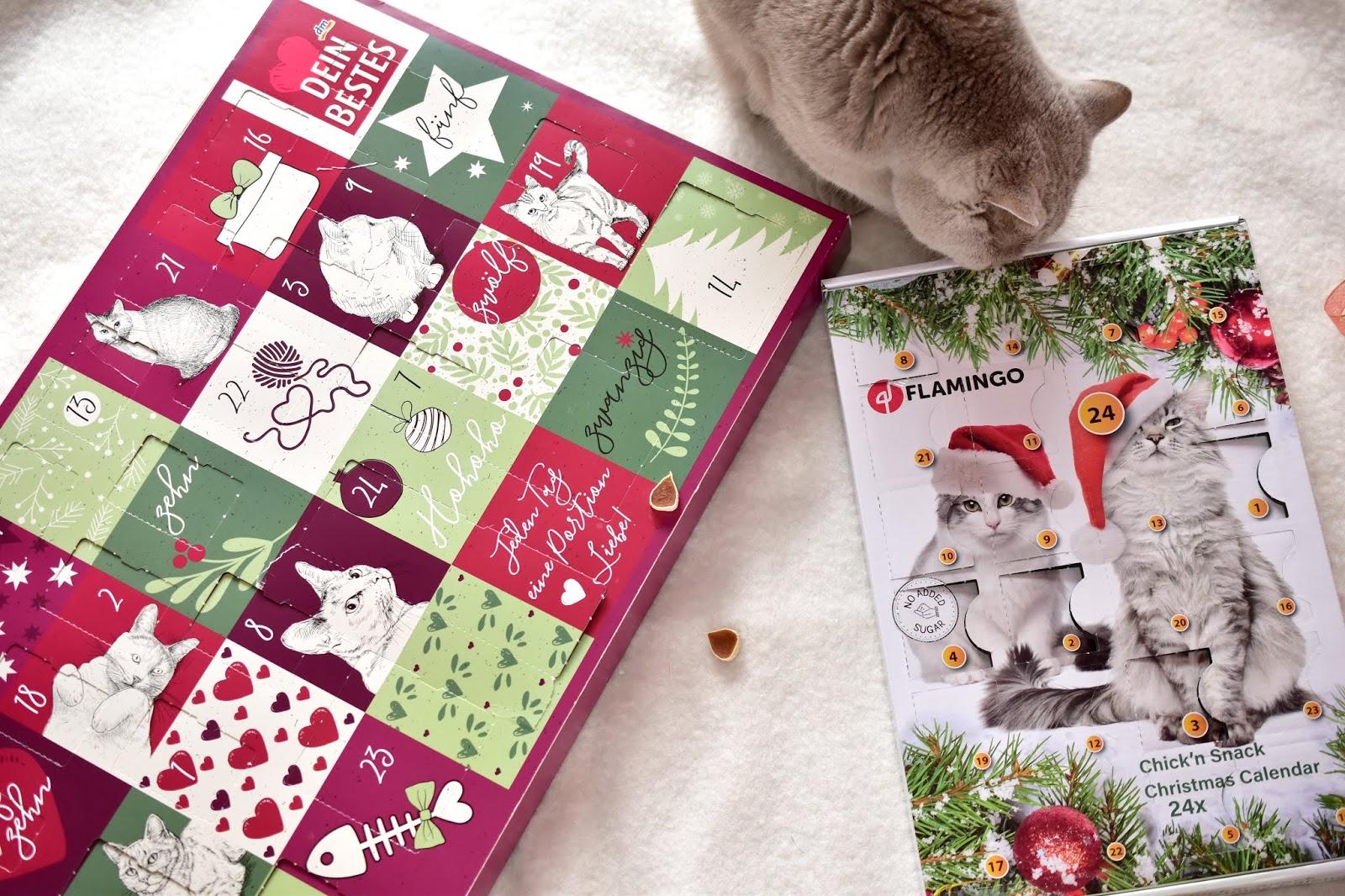 Mačacie adventné kalendáre