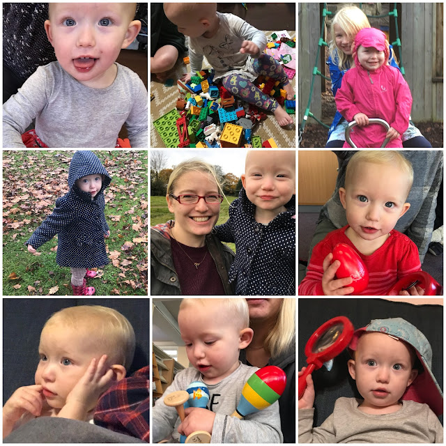 A collage of 9 photo's of Little in the last month including sitting on duplo, on a see saw, on grass, hugging me, with shaker instruments, watching TV while teething and with a baseball cap and magnifying glass