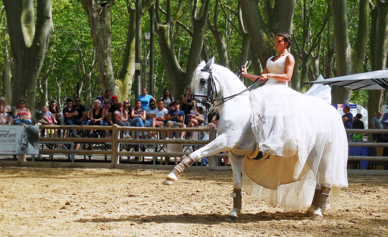 Rencontres equestre beaucaire 2016