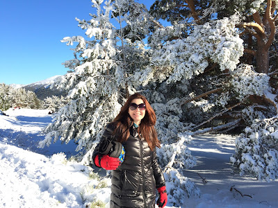 nieve Madrid invierno