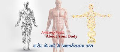 शरीर के बारे आश्चर्यजनक तथ्य Body Facts in Hindi