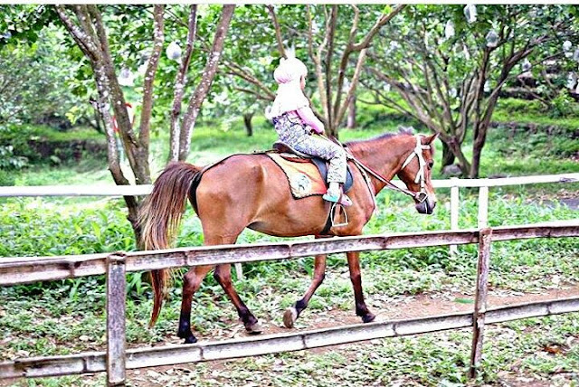 Berkuda Di Wisata Bhakti Alam Pasuruan