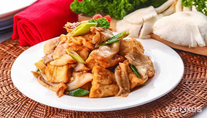 15 Aneka Resep Masakan Jamur Tiram Yang Enak dan Mudah