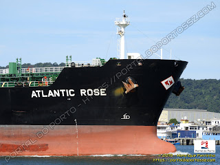 Atlantic Rose