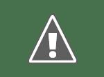 Abu Nawas Memilih jalan ke hutan yang Indah
