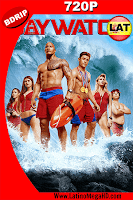 Baywatch Guardianes de la Bahía UNRATED (2017) Latino HD BDRip 720p - 2017