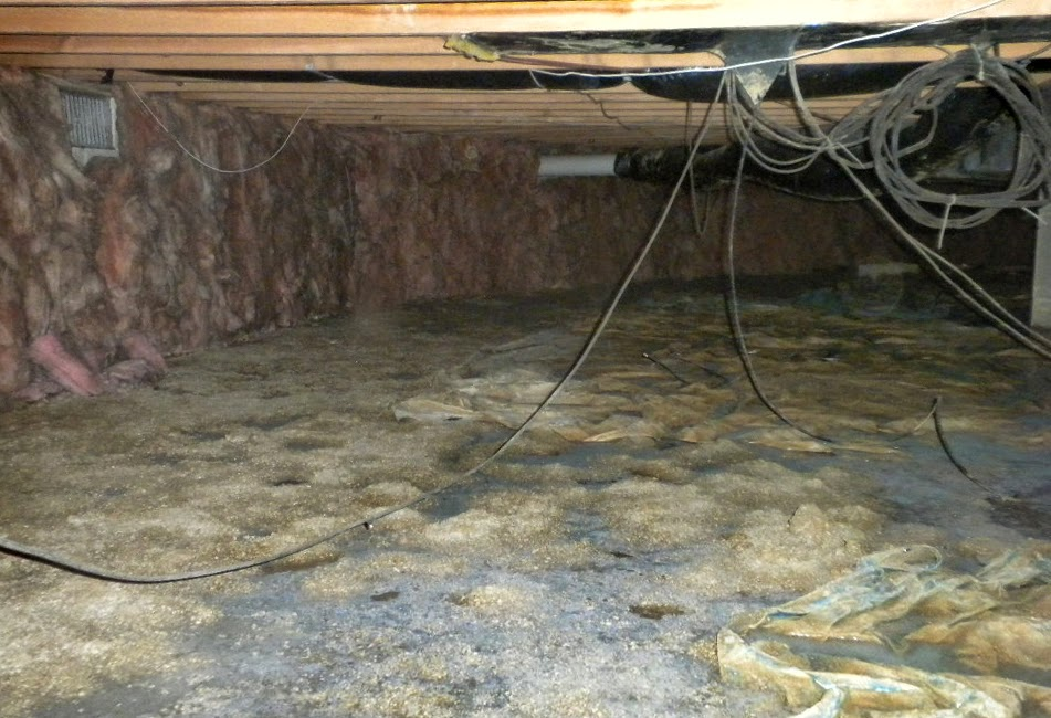 Flooded Muddy Moldy Crawlspace In Stoutsville Ohio Home