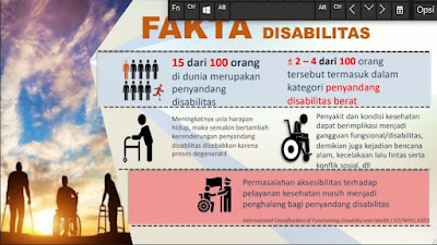 fakta disabilitas