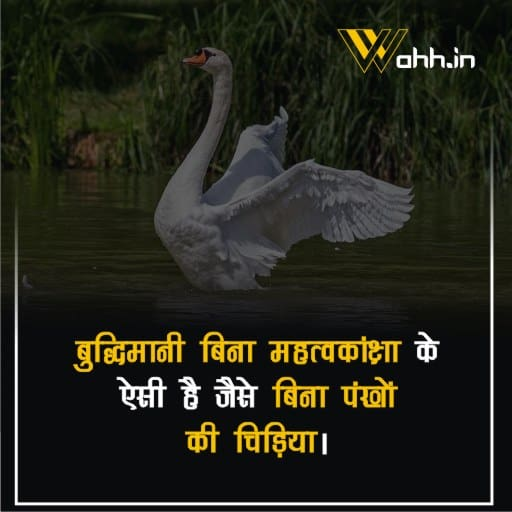 Inspirational Ambition  Quotes In Hindi