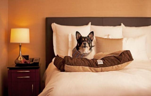 Hotel Hyatt Place em Orlando