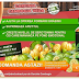 Decrease the Fat Mass with Garcinia Cambogia Veda