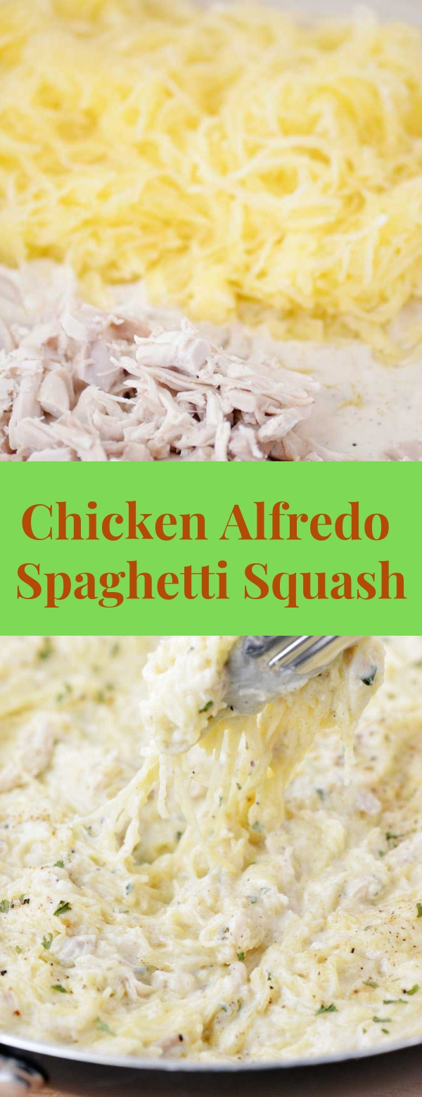 Chicken Alfredo Spaghetti Squash  #alfredo #chickenrecipes #lowcarb #keto #ketorecipes #easyrecipes #spaghettisquash