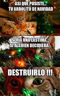 Gato dice destruir árbol Navidad