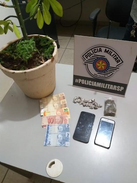 Denúncia anõnima leva Policia militar à prisão de 02 homens por tráfico de drogas e apreesão de 35 muda deMaconha