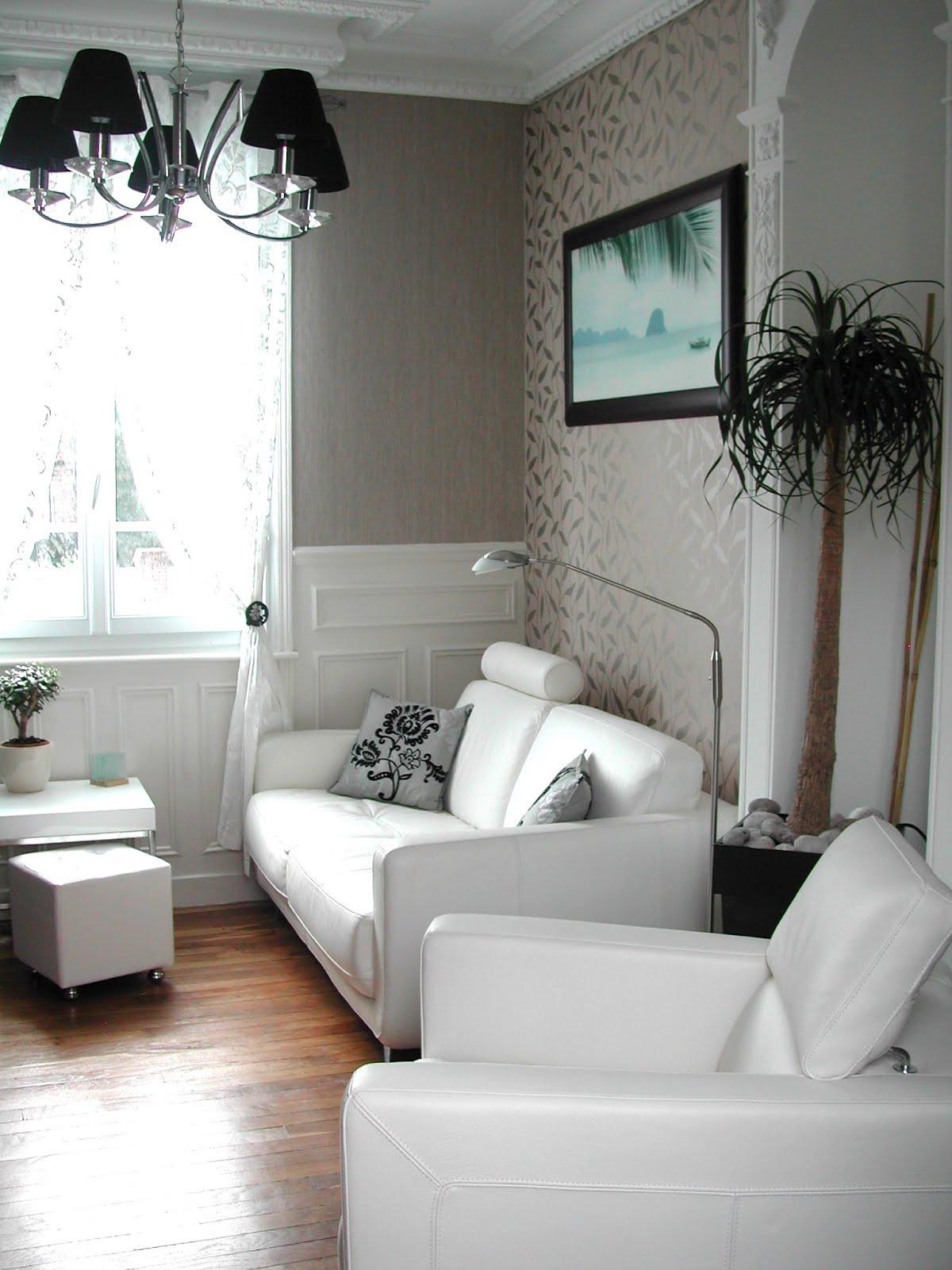 Salon contemporain – mobilier de style et décoration ...