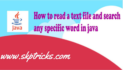 How to read a text file and search any specific word in java
