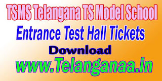TSMS Telangana TS Model School 8th Class Entrance Test Hall Tickets Download