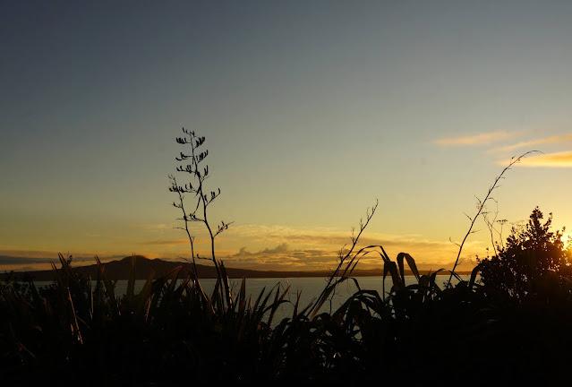 Early morning Rangitoto