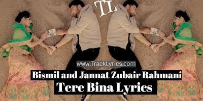 tere-bina-lyrics
