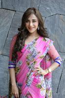 Angela Krislinzki Rogue Movie Fame Telugu Actress in Saree Backless Choli 129.JPG